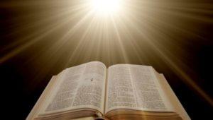 Immanuel Bible Studies